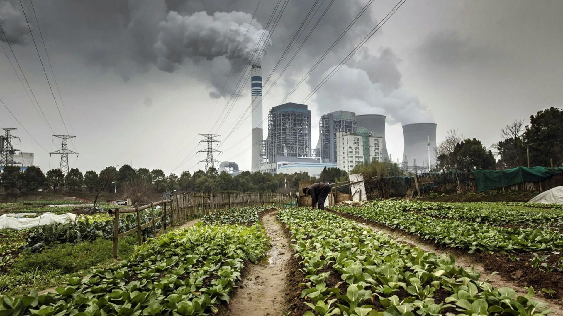 Проблемы экологии в современном мире